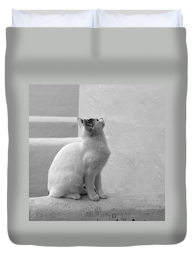 Landscape Duvet Cover featuring the photograph The Blond 4 by Jouko Lehto