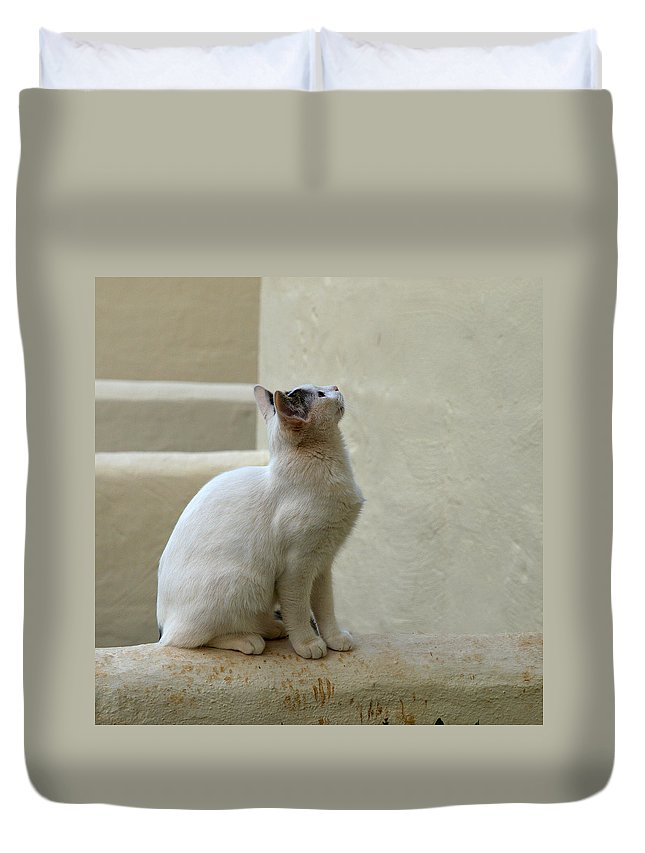 Landscape Duvet Cover featuring the photograph The Blond 5 by Jouko Lehto