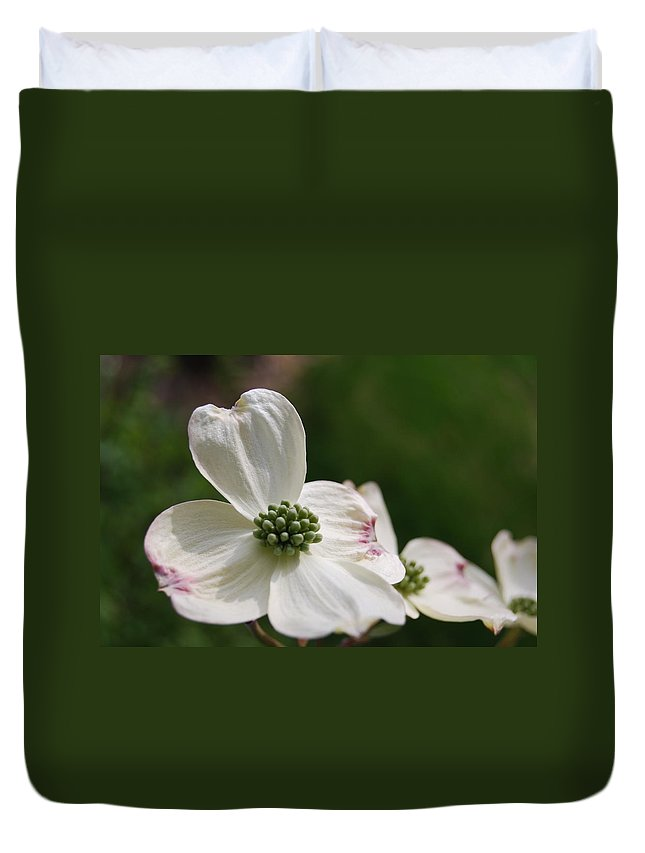 Dogwood Duvet Cover featuring the photograph The Bloom Of Affection by Trish Hale