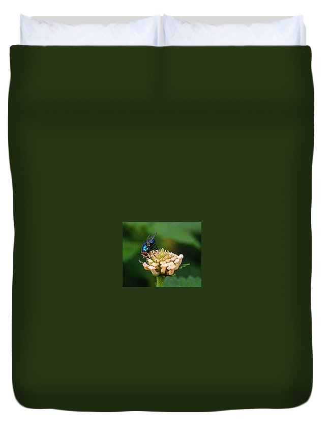 Duvet Cover featuring the photograph The Blue Bug by Galeria Trompiz