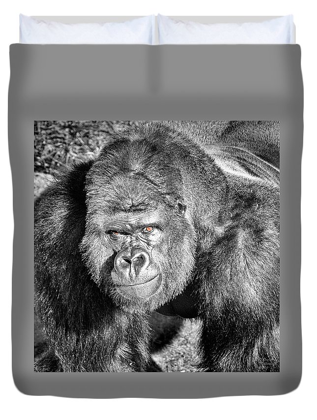 The Bouncer Duvet Cover featuring the photograph The Bouncer by David Millenheft