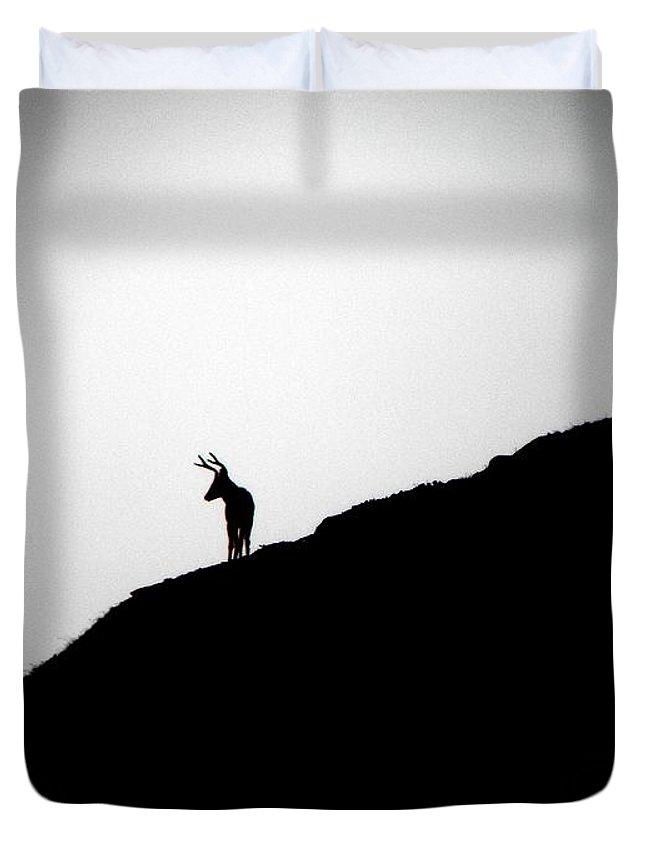 Landscape Duvet Cover featuring the photograph The Buck by Elizabeth Hoskinson