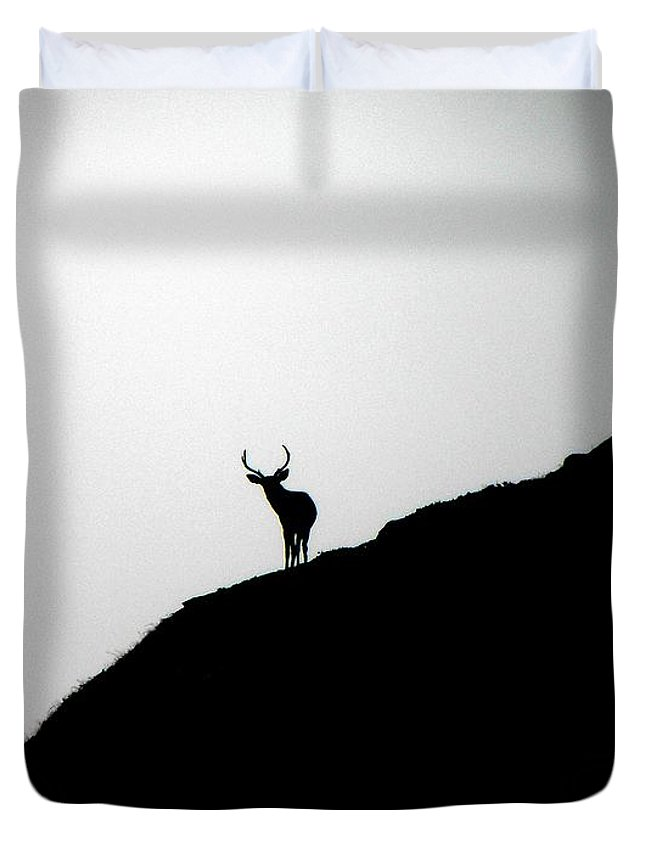 Landscape Duvet Cover featuring the photograph The Buck II by Elizabeth Hoskinson