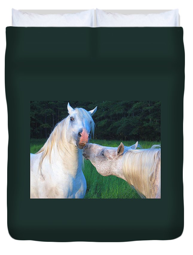 Stallions Duvet Cover featuring the photograph The Challange Begins by Dawn Johansen