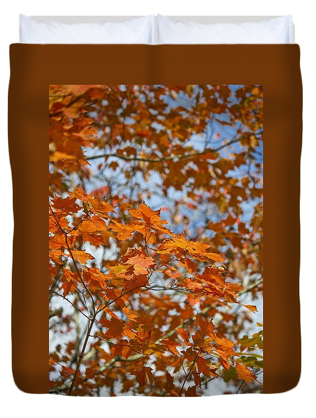 Fall Duvet Cover featuring the photograph The Color Of Fall 1 by Teresa Mucha