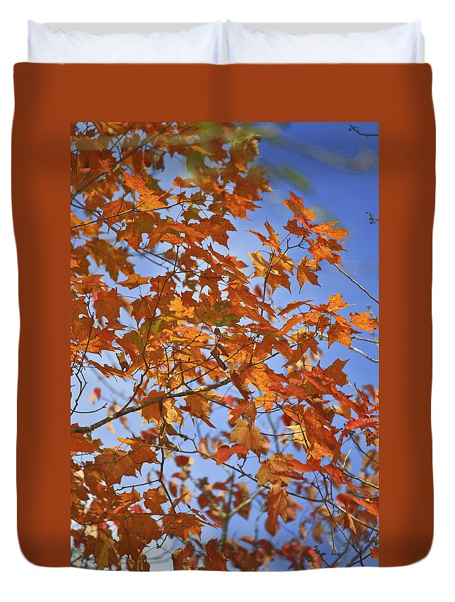 Fall Duvet Cover featuring the photograph The Color Of Fall 2 by Teresa Mucha
