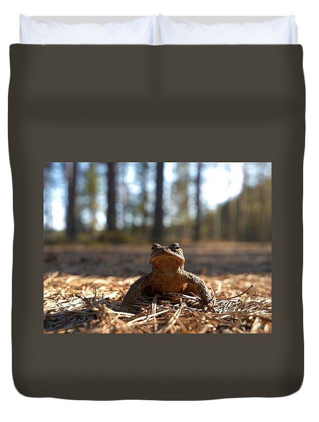 Seitseminen Duvet Cover featuring the photograph The Common Toad 3 by Jouko Lehto