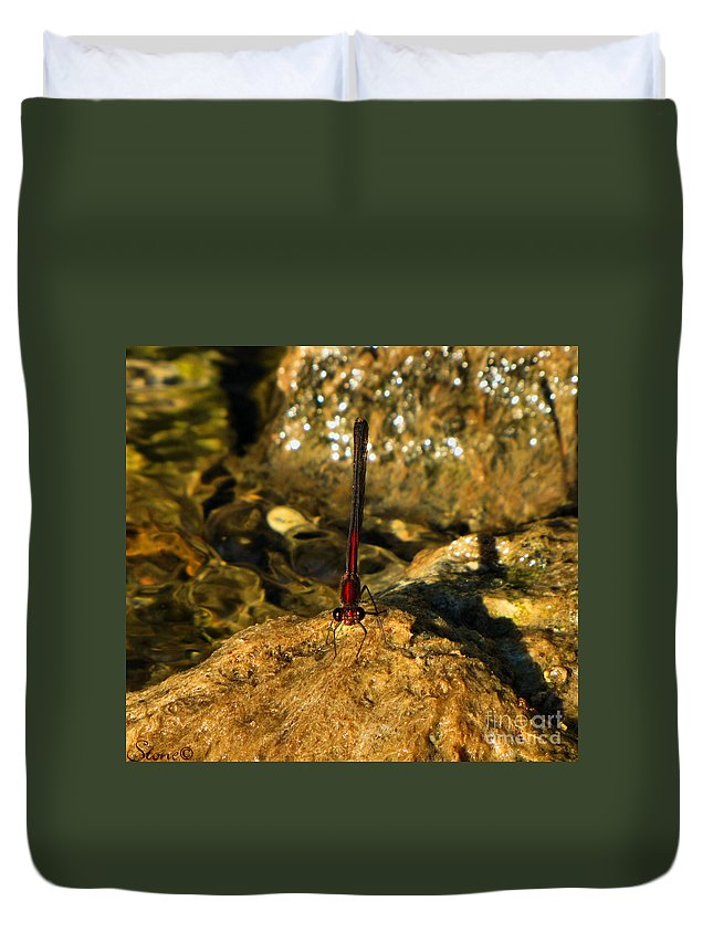 Landscape Duvet Cover featuring the photograph The Creek by September Stone