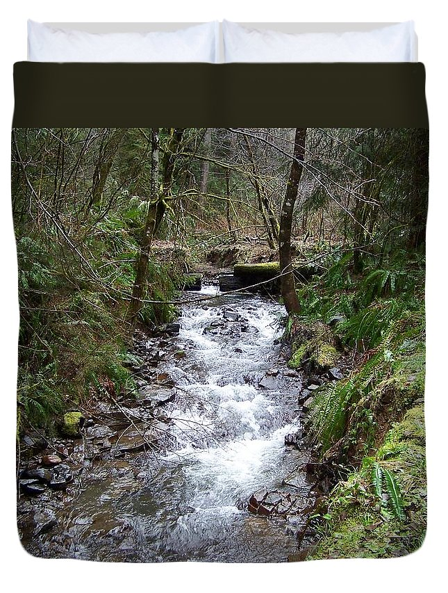 Digital Photography Duvet Cover featuring the photograph The Creek by Laurie Kidd