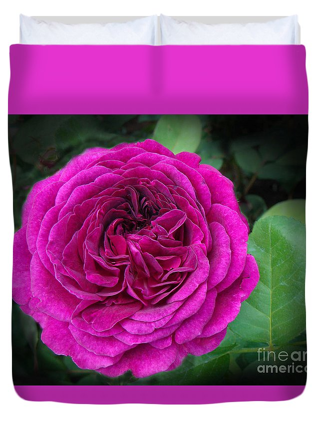 Red Rose Duvet Cover featuring the photograph The Dark Lady by Angela Maher