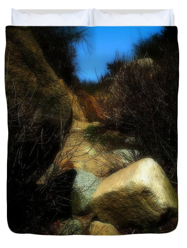Beach Duvet Cover featuring the photograph The Delicacy Of A Summer Night by RC DeWinter