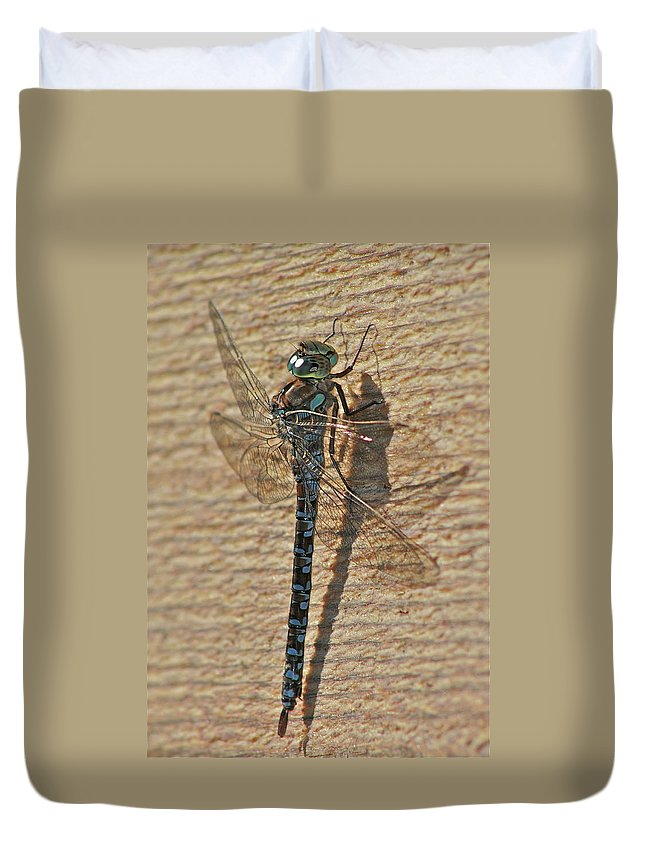 Dragon Fly Duvet Cover featuring the photograph The Dragon by Rick Monyahan