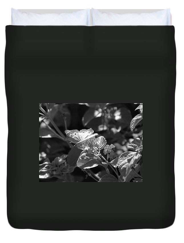 Black And White Duvet Cover featuring the photograph The Eagle Has Landed by Rob Hans