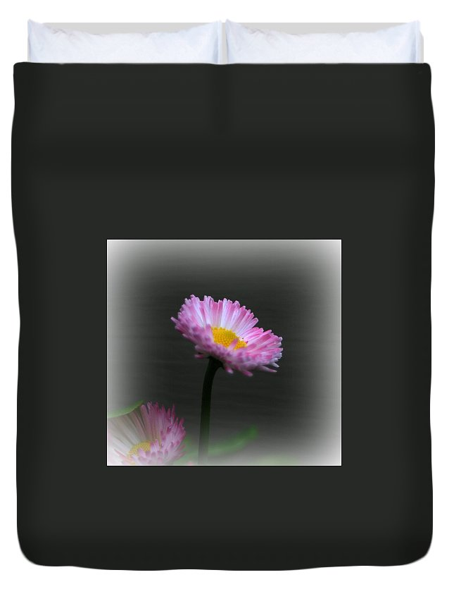 Flower Duvet Cover featuring the photograph The English Daisy by Barbara S Nickerson