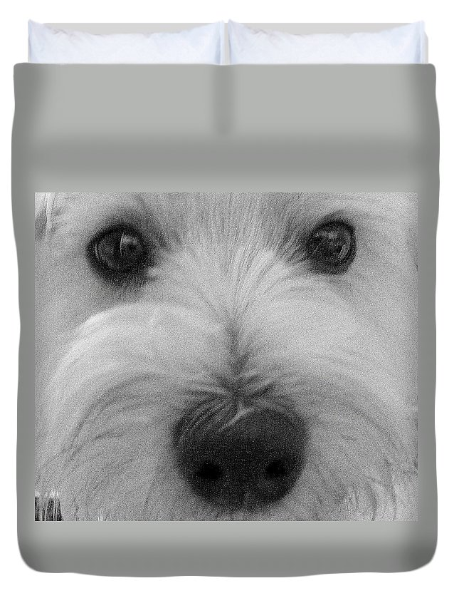 Dog Duvet Cover featuring the photograph The Eyes Have It by Ed Smith