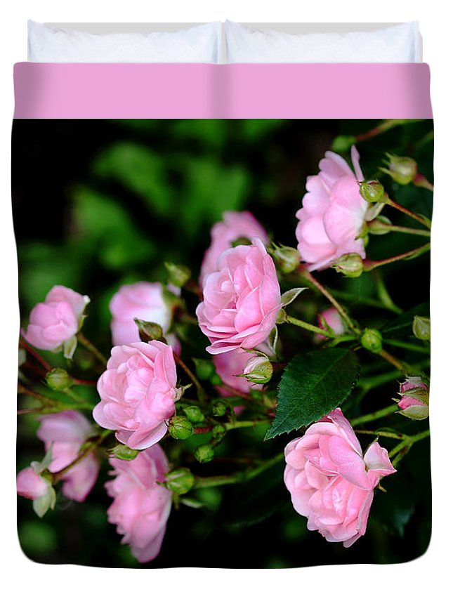 Fairy Roses Duvet Cover featuring the photograph The Fairy by Debbie Oppermann