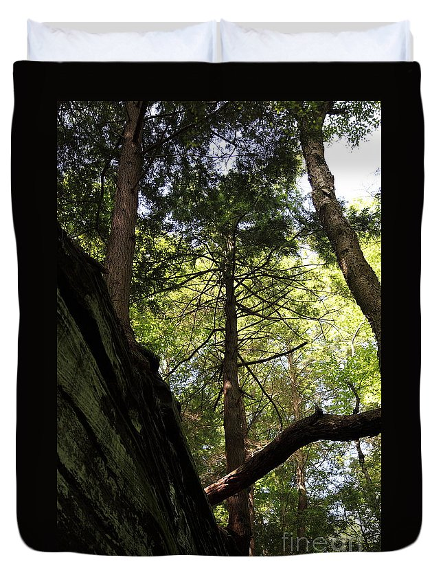 Tree Duvet Cover featuring the photograph The Fallen Triangle by Amanda Barcon