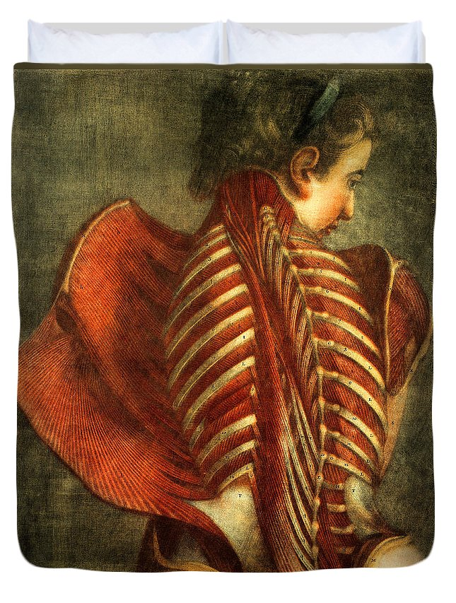 Anatomy Duvet Cover featuring the photograph The Flayed Angel by Science Source