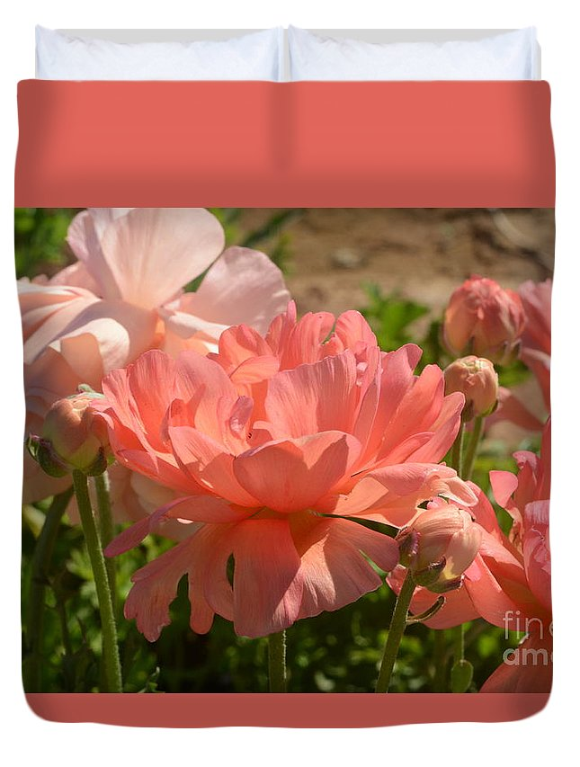 The Flower Fields At Carlsbad Duvet Cover featuring the photograph The Flower Field Season by Luv Photography