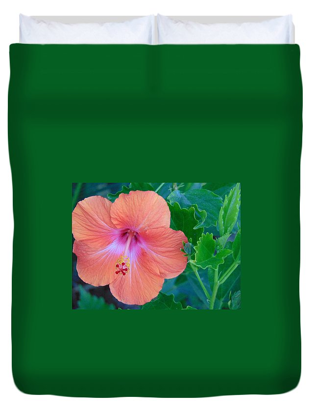 Green Duvet Cover featuring the photograph The Flower by Lisa Cooley