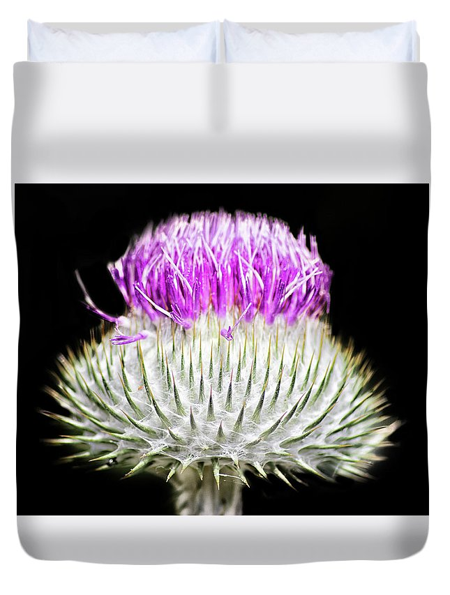 Scotland Duvet Cover featuring the photograph The Flower Of Scotland by Martin Newman