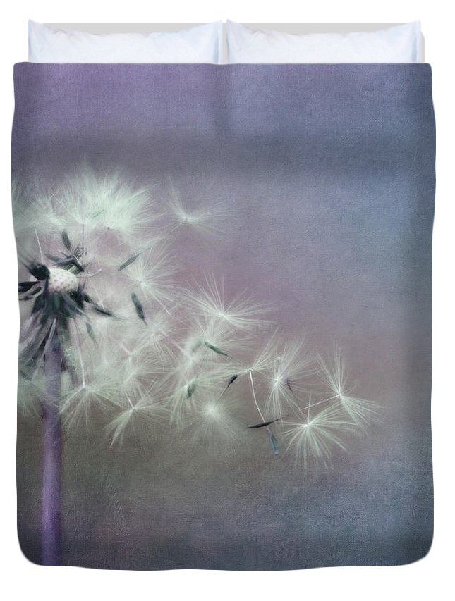 Dandelion Duvet Cover featuring the photograph The Four Winds by Priska Wettstein