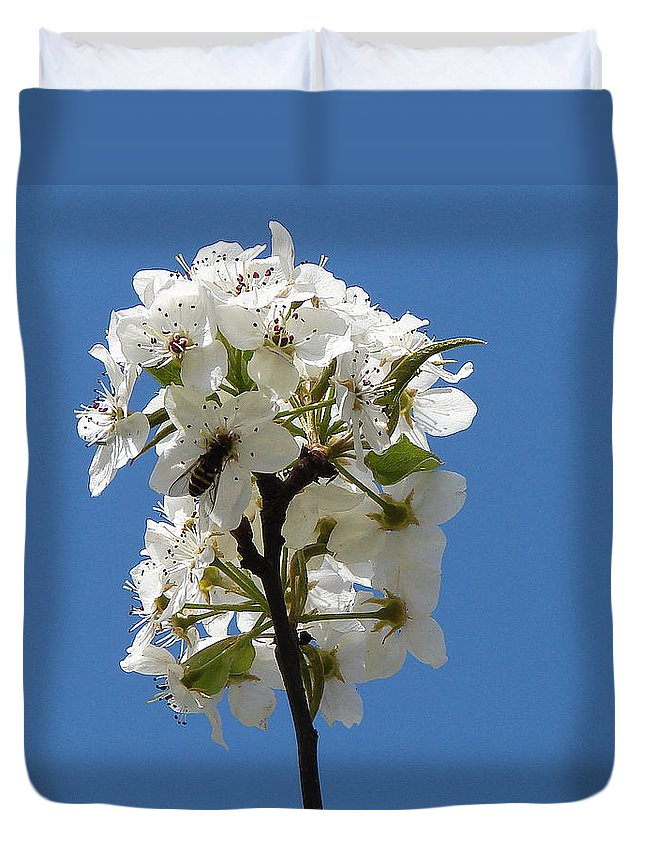 Duvet Cover featuring the photograph The Fruits Of Spring by Luciana Seymour