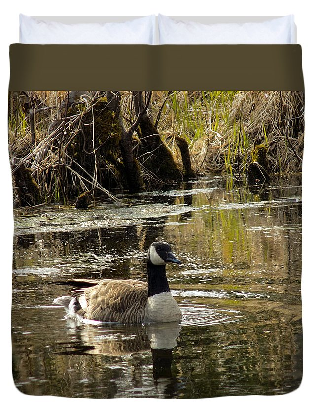 Goose Duvet Cover featuring the photograph The Graceful Goose by William Tasker