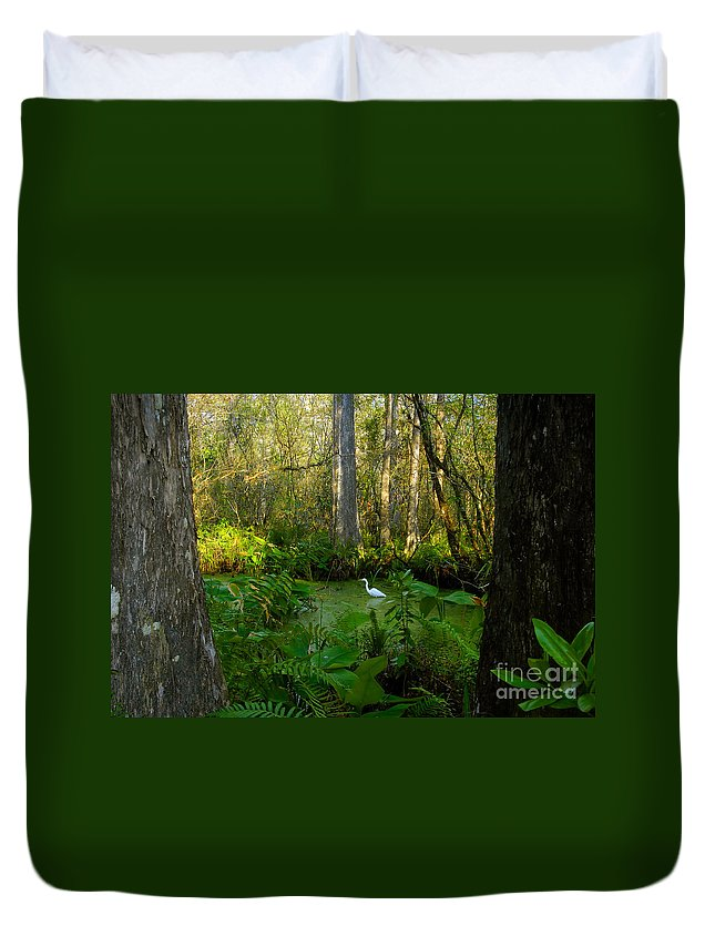 Corkscrew Swamp Duvet Cover featuring the photograph The Great Corkscrew Swamp by David Lee Thompson