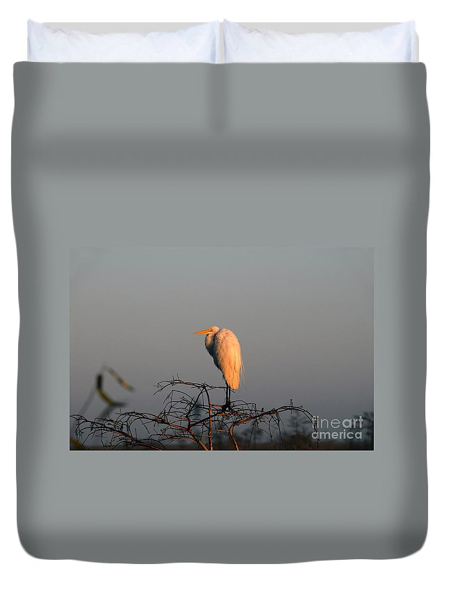 Egret Duvet Cover featuring the photograph The Great Egret by David Lee Thompson