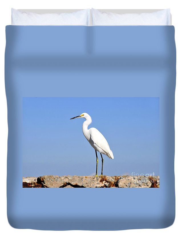Great Snowy Egret Duvet Cover featuring the photograph The Great Snowy Egret by David Lee Thompson