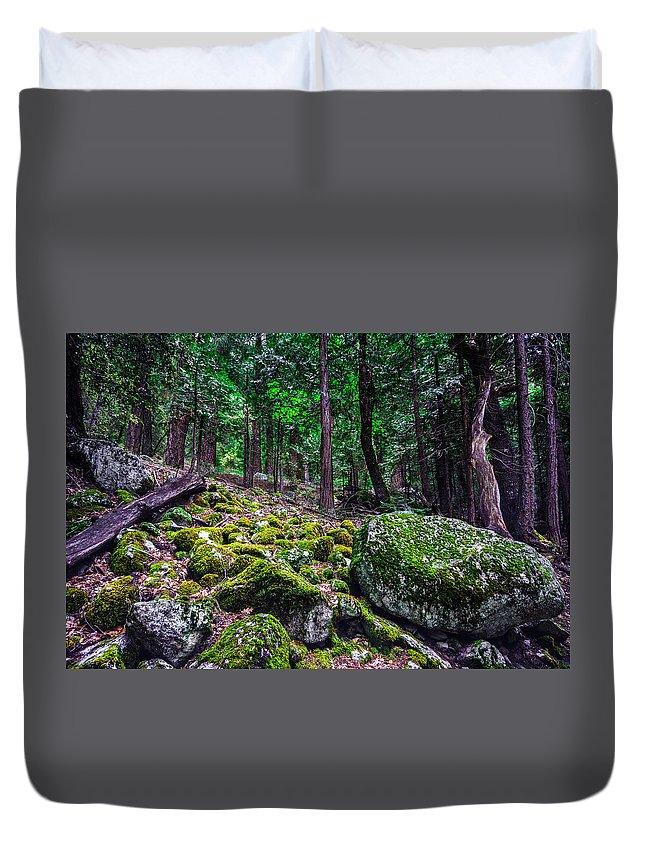 #green #moss #forest #yosemite #landscape #mirrorlake #mammothlakes #yellow #boulders #monolake #tiogapass Duvet Cover featuring the photograph The Green Room by Gabriel De Leon