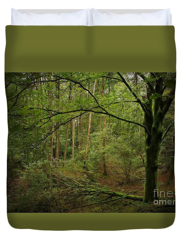 Tree Duvet Cover featuring the photograph The Green Tree by Rikard Strand