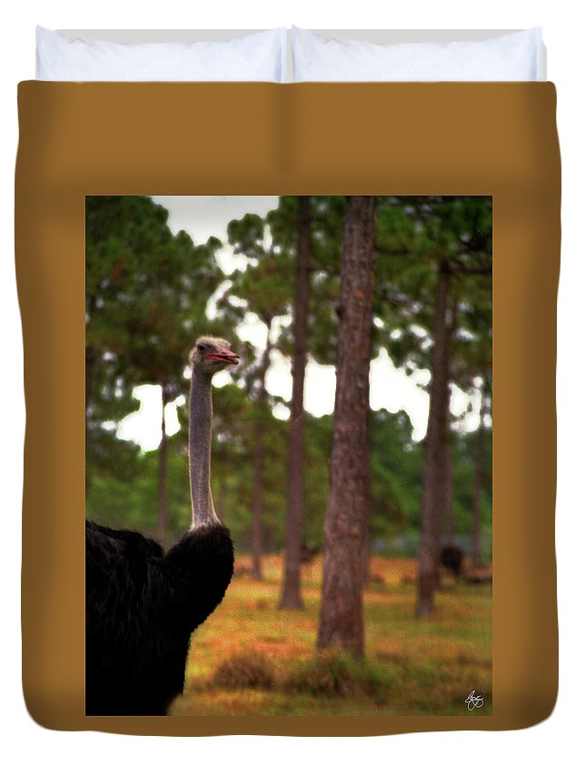 Ostrich Duvet Cover featuring the photograph The Grove by Wayne King