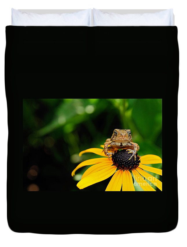 Toad Duvet Cover featuring the photograph The Harbinger by Lois Bryan