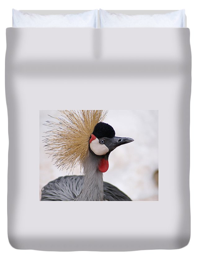 Crane Duvet Cover featuring the photograph The Headress Crowned Crane by Heather Coen