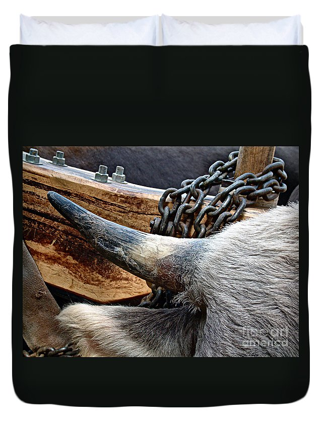 Animal Duvet Cover featuring the photograph The Horn Of The Beast by RC DeWinter