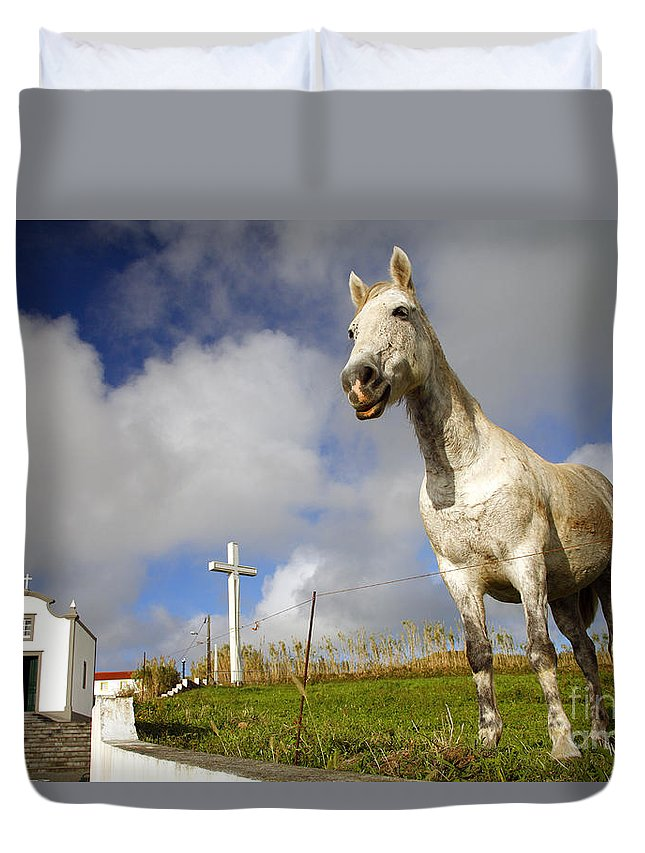 Portugal Duvet Cover featuring the photograph The Horse And The Chapel by Gaspar Avila