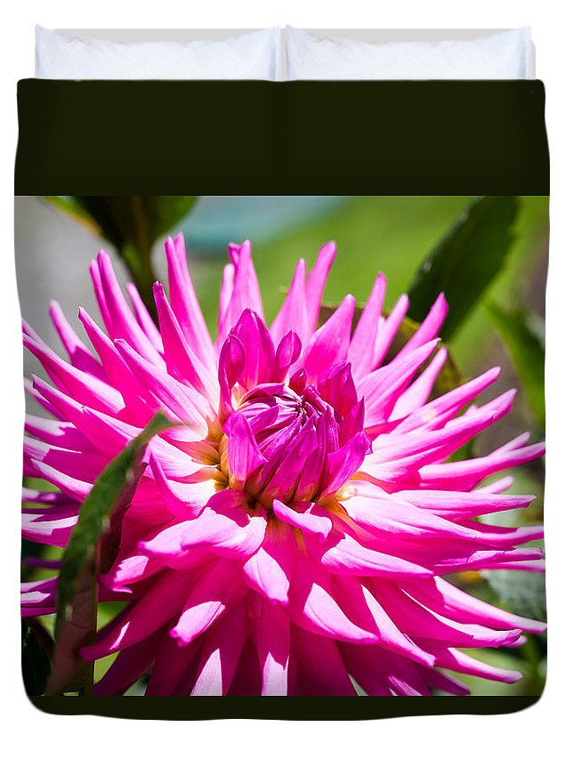 Bellingham Duvet Cover featuring the photograph The Lady Is A Dahlia by Judy Wright Lott