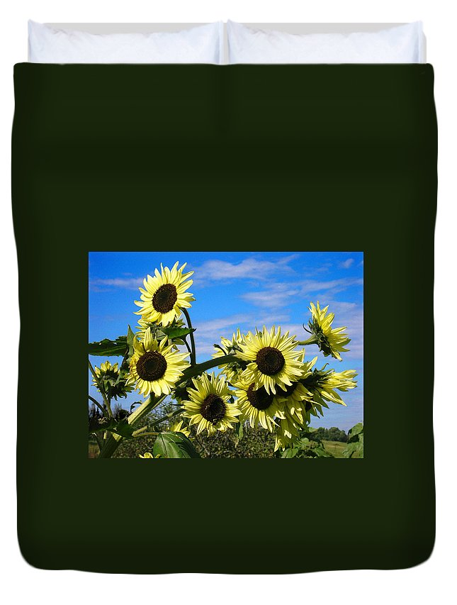 Flowers Duvet Cover featuring the photograph The Last Of Summer by Steve Karol