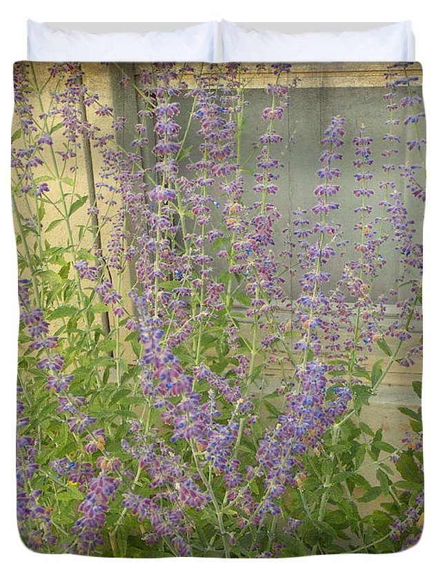 Lavender Duvet Cover featuring the photograph The Lavender Outside Her Window by Mother Nature