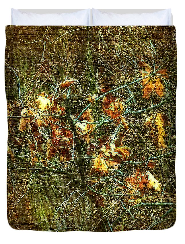 Autumn Duvet Cover featuring the digital art The Light In The Forest by RC DeWinter