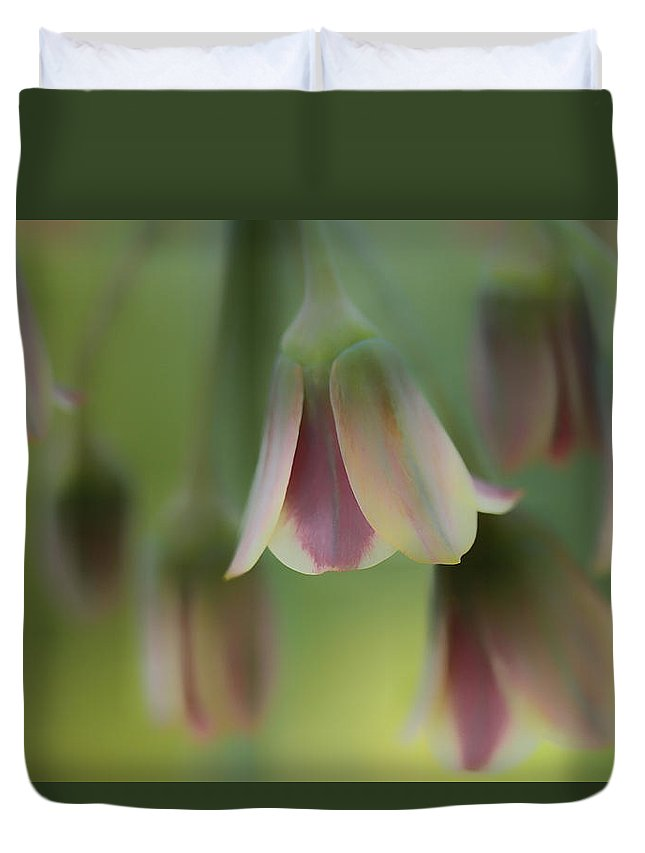 Connie Handscomb Duvet Cover featuring the photograph The Light Inside The Belfry by Connie Handscomb