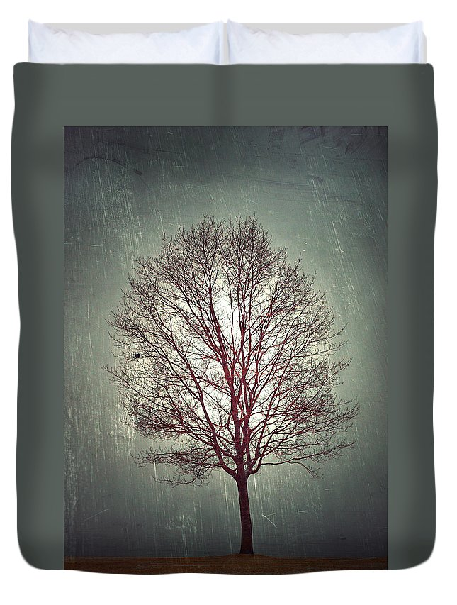 Tree Duvet Cover featuring the photograph The Light Within by Tara Turner