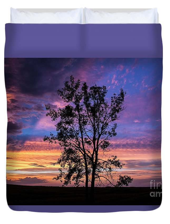 Severe Weather Duvet Cover featuring the photograph The Lonely Tree by Francis Lavigne-Theriault