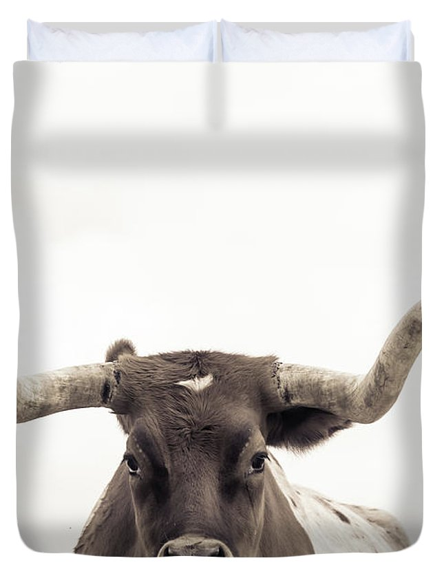 Longhorns Duvet Covers