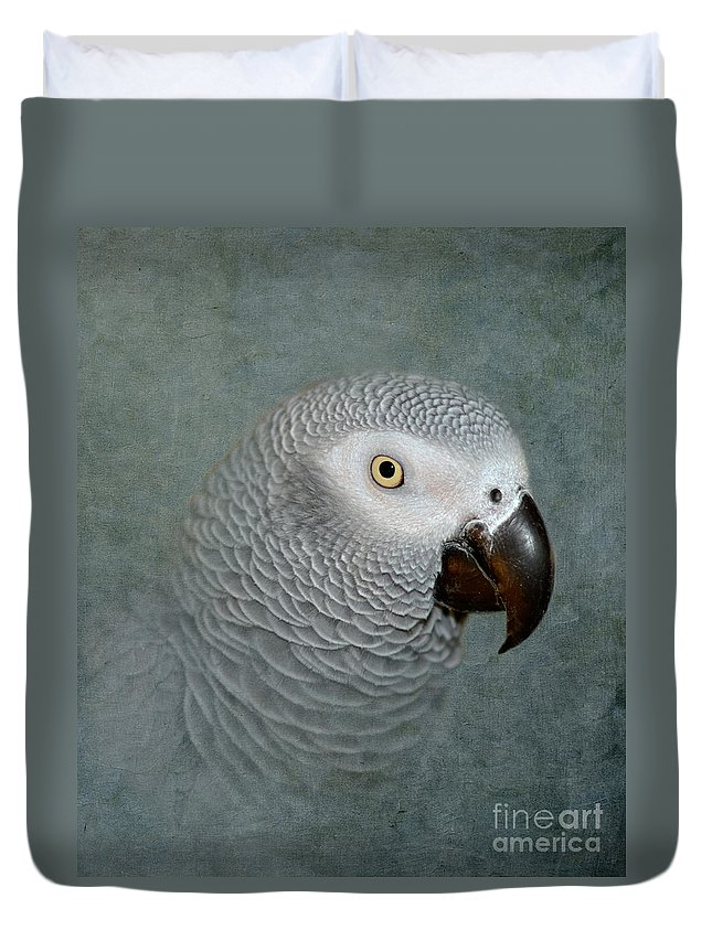 Parrot Duvet Cover featuring the photograph The Love Of A Gray by Betty LaRue