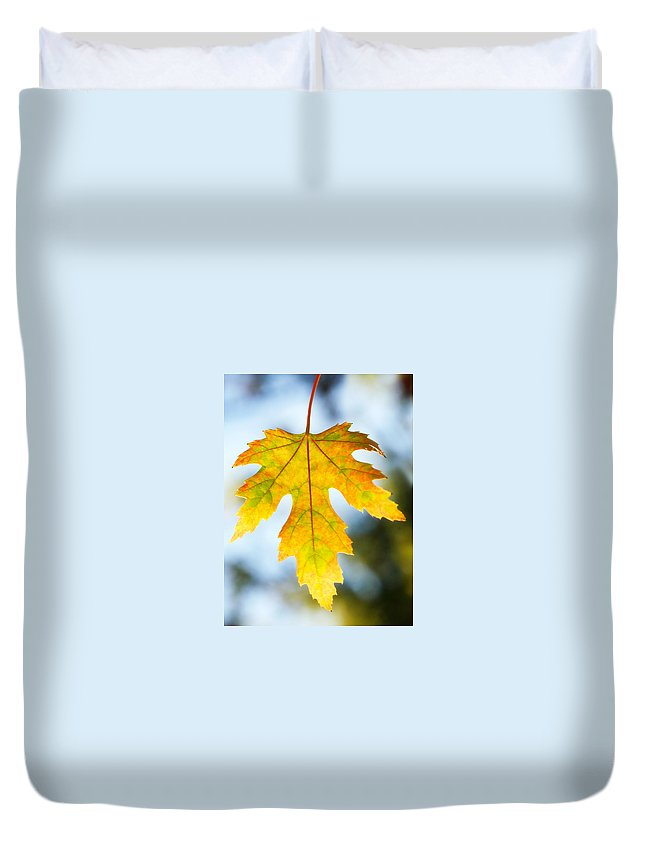 Maple Duvet Cover featuring the photograph The Maple Leaf by Marilyn Hunt