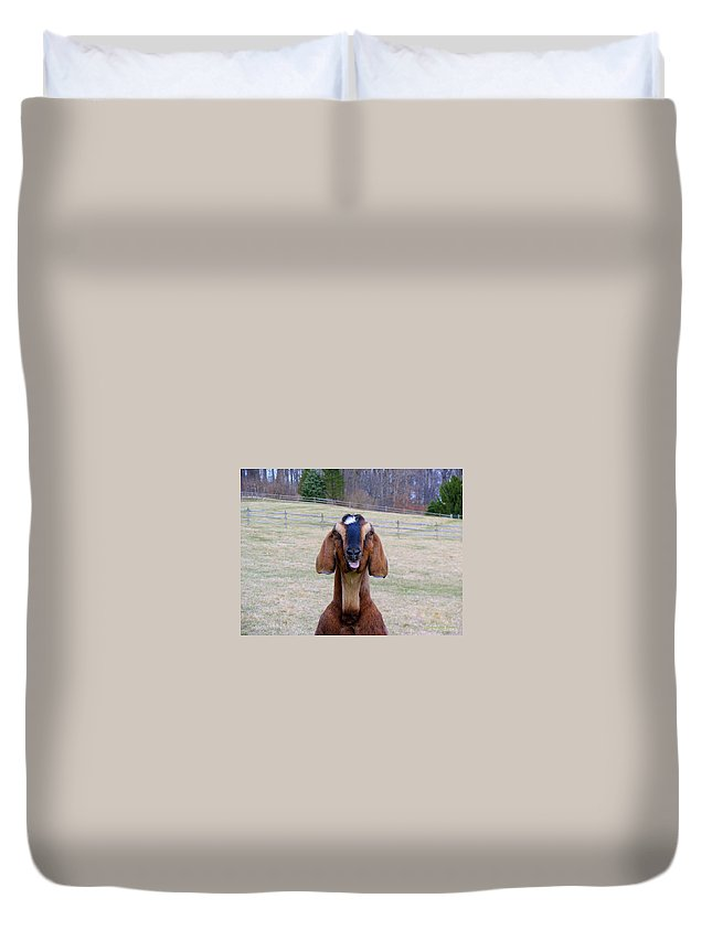 Animals Duvet Cover featuring the photograph The Name Is Billy... by Deborah Crew-Johnson