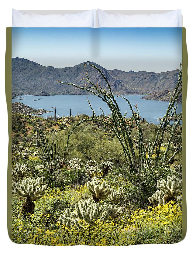 Arizona Duvet Cover featuring the photograph The Ocotillo View by Cathy Franklin